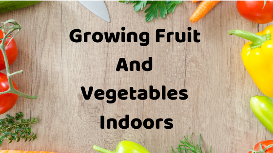 Growing Fruit And Vegetables Indoors